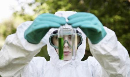 Новая программа «Обучение по экологической безопасности»